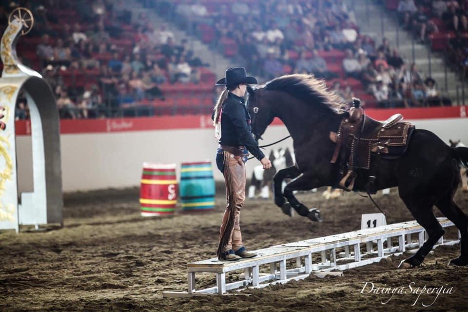 Magen Warlick Riding Amp Versatility Clinic Fairwinds Farm